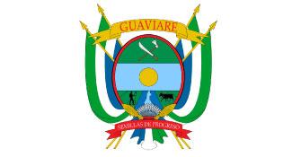 logo guaviare